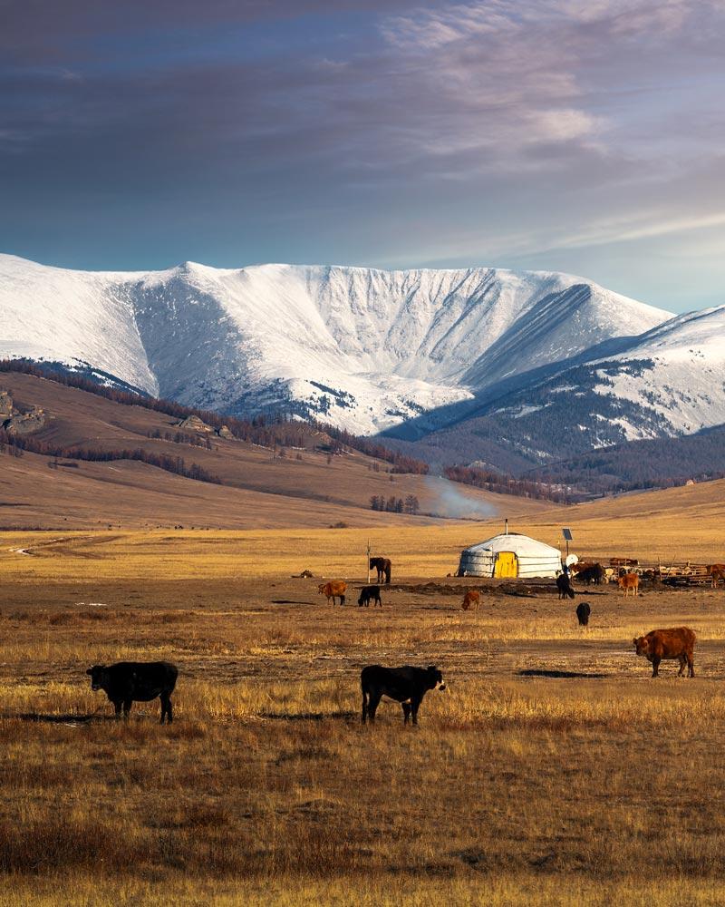 Mongolei, Jurte, Altan Gebirge